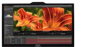 Monitor Philips 24 Pulgas 4K
