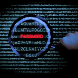 seguridad password compra online