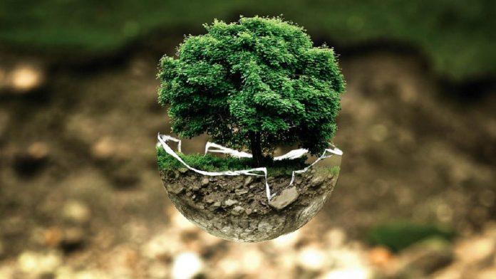 green IT ahorro energético