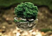 informe de sostenibilidad reutilización de equipos sostenibilidadgreen IT ahorro energético atos hdf data cernter ecológico