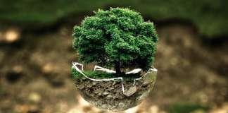 informe de sostenibilidad reutilización de equipos sostenibilidadgreen IT ahorro energético