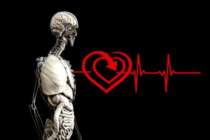 me imprime un corazon 3D
