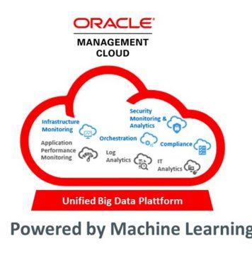 Análisis Oracle Management Cloud, Servicios integrados de monitoreo