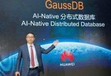 David Wang GaussDB.