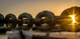 Tutellus, la clave para formarse en Blockchain | Master en blockchain