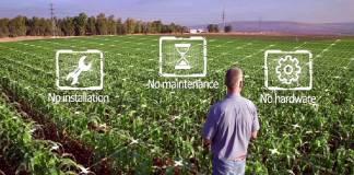 Internet espacial starlink Tecnología satelital para optimizar el riego de cultivo