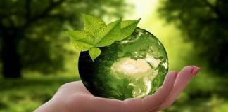 Epson entre el 1 % de empresas TI más comprometidas con la sostenibilidad ODS