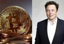 elon musk cotizacion de bitcoin tesla